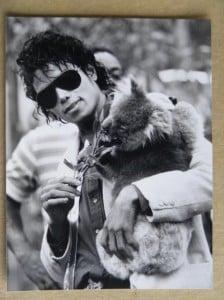 Michel Jackson  tuvo y koala como mascota