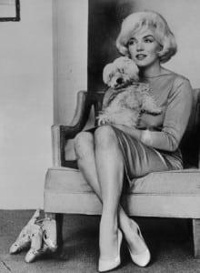 Marilyn Monroe y  su perro Maf.