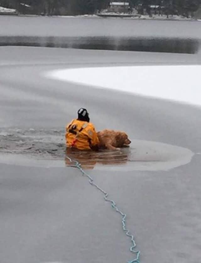 bombero-Waterboro-Maine-rescata-perro-lago-helado